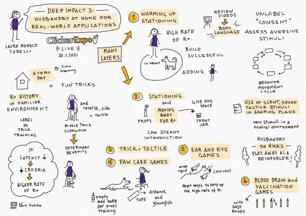 Clicker Expo Live: Presentation by Laura Monaco Torelli